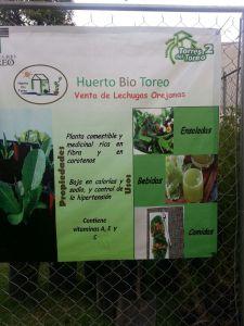 Cartel de Huerto Bio Toreo